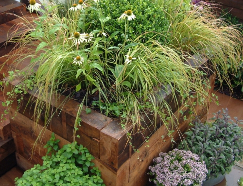Raise your game! How to create raised beds