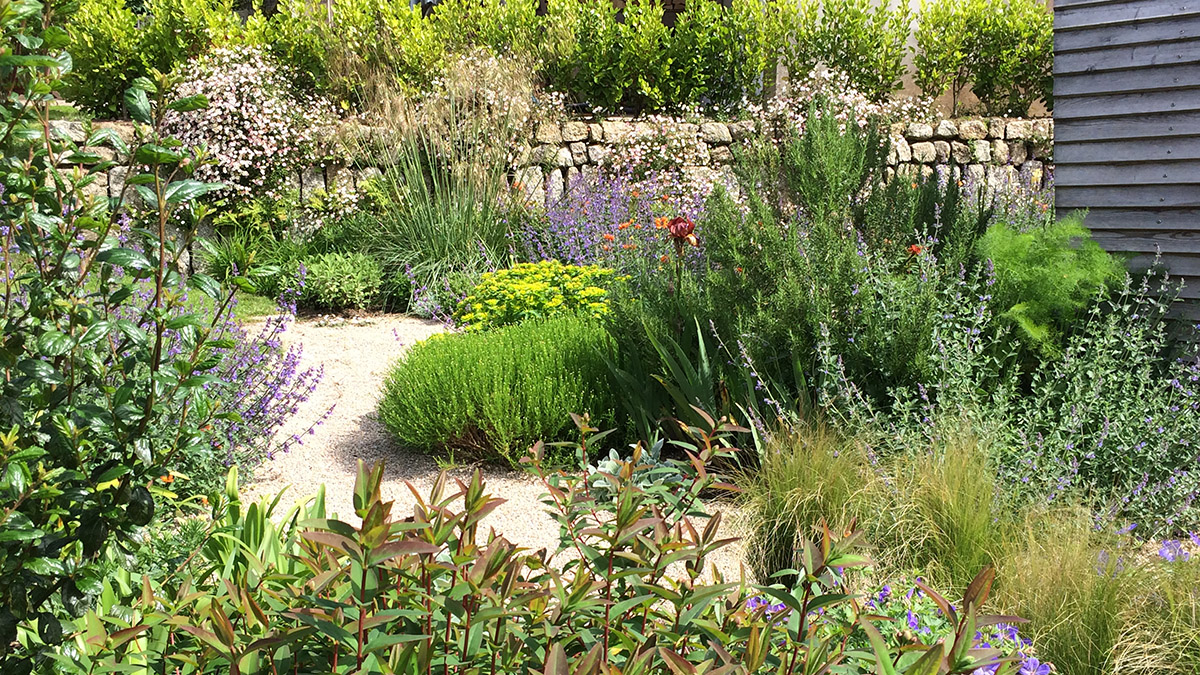 Planting backed by a stone wall in a gravel garden