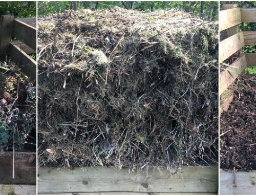 Making compost – Some help for your heap!