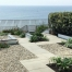 A seafront garden with gravel, a paved path and planting