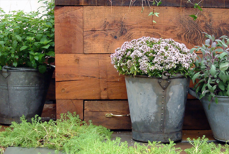 Urban cottage bucket planters